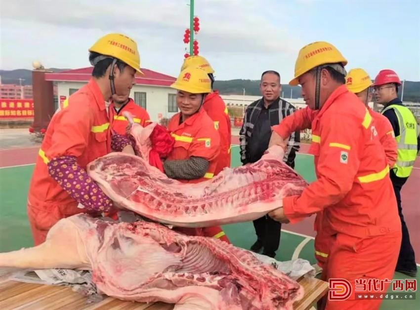 项目部给建设者们送年猪,让留守的建设者们感受到过年的喜庆和温暖。广西邕洲高速公路有限公司供图_副本.jpg