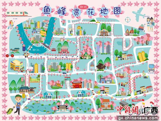 柳州鱼峰赏花地图出炉 助阵紫荆花文化旅游活动