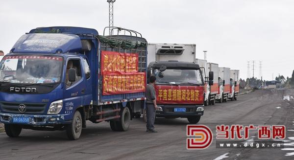 满载捐赠物资的大货车依次进入停车场。谢世江 陈标 摄.jpg