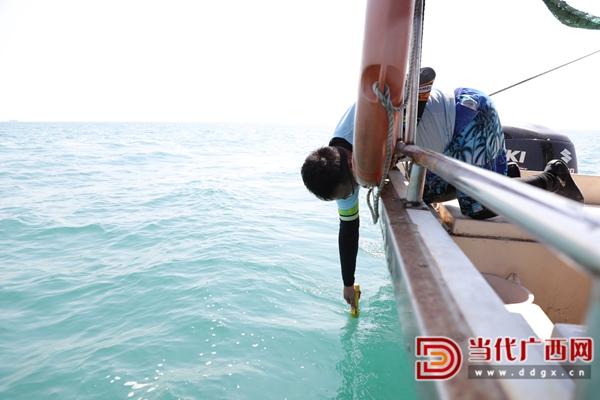 黄雯教授测量深度。记者 张友豪 摄.jpg